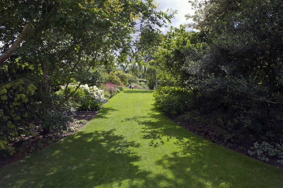 RHS Hyde Hall Gardens.