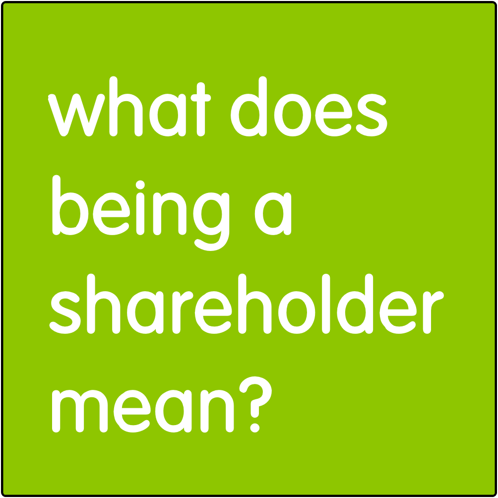 What does being a shareholder mean?