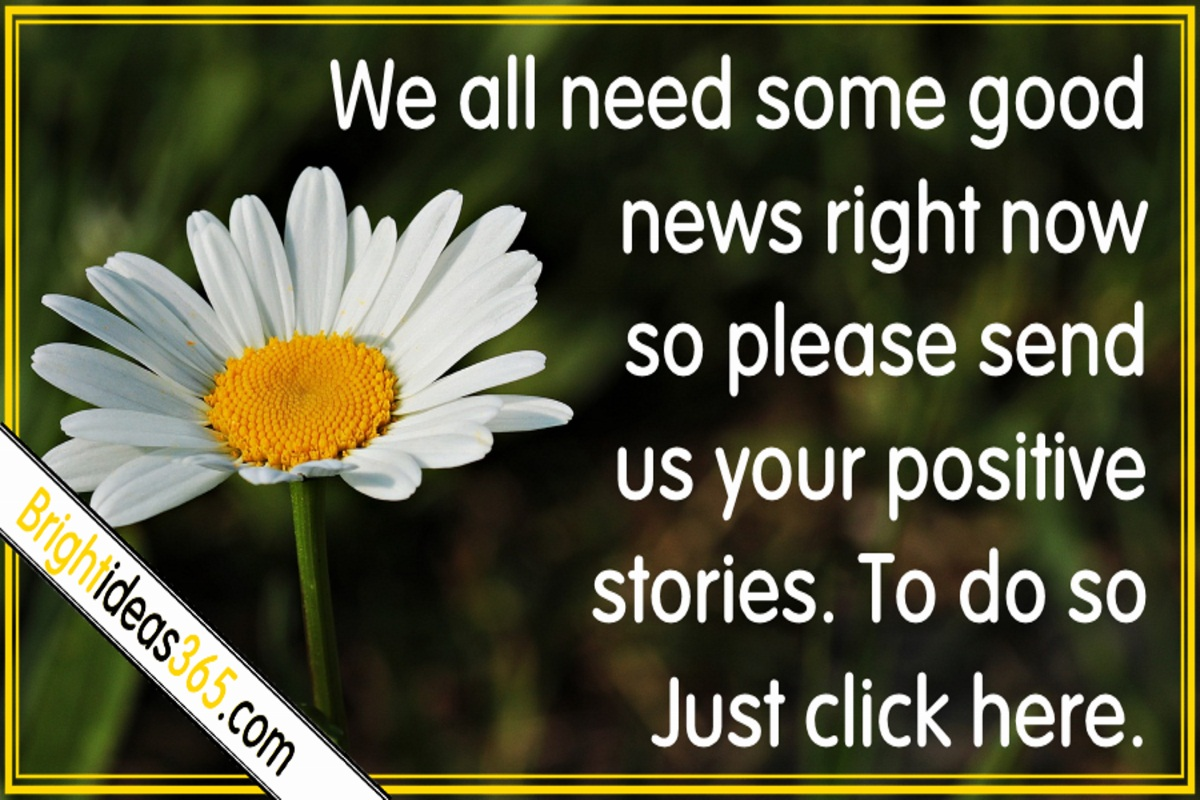 Please send us your good news stories.